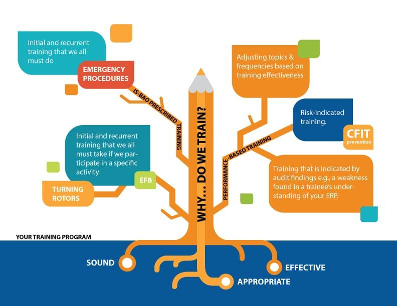 tree-diagram for training needs assessment